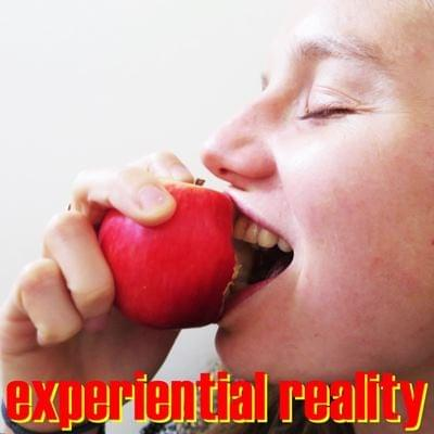 Experiential Reality Possibility Management