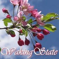 Waking State Possibility Management