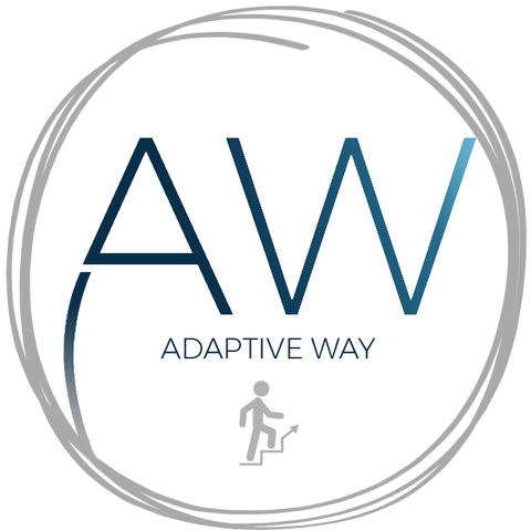 Evolutesix_Adaptive Way Programme