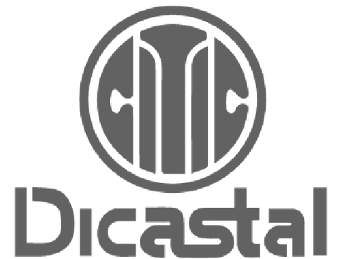 Citic Dicastal Co., Ltd_Citic Dicastal Co., Ltd