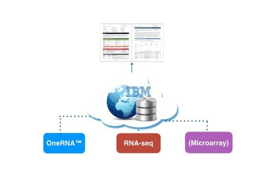 OneRNACloud
