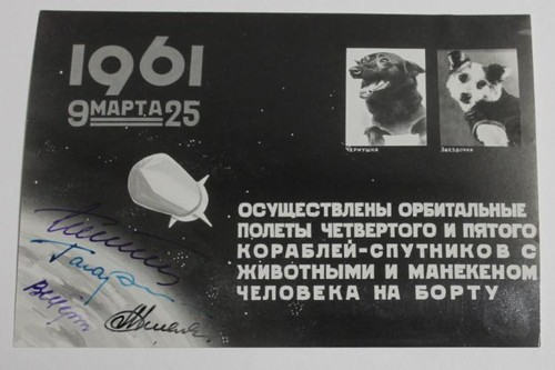 Space Dog Photo Montage Signed by 4 cosmonauts youri Gagarin