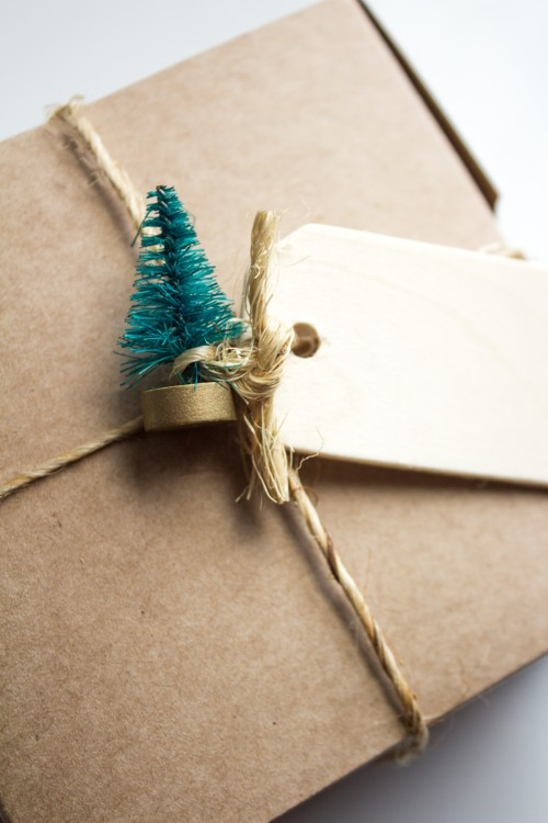 Surprise Gift Box!
