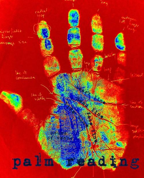 Palm Reader poster