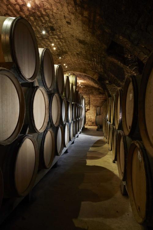 Côtes d'Auxerre - Cuvée Gueules de Loup