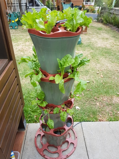 Easy Aquaponics Kit