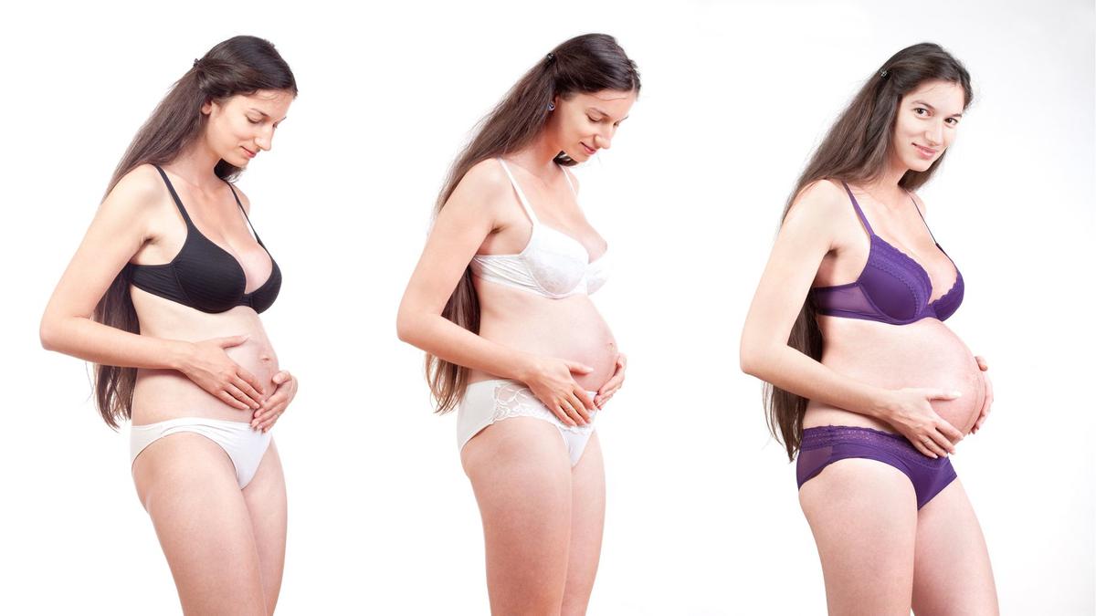 Pregnancy Timeline Photo